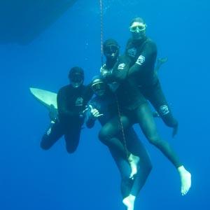 Apnéeau, Club d'apnée à Sète - sous l'eau
